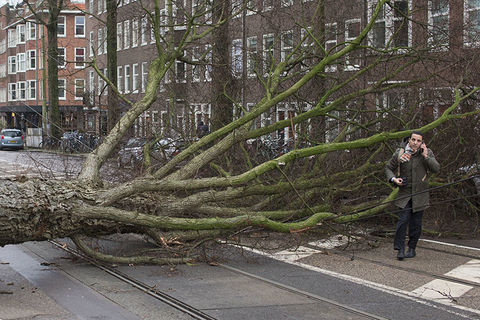 Scores of flights and trains were cancelled in The Netherlands and drivers were warned to stay off the roads as the country took a powerful hit of a storm which was set to lash large parts of Europe.
