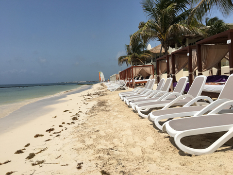 Newly Built Barrier at Desire Riviera Maya Resort Fights Sargassum