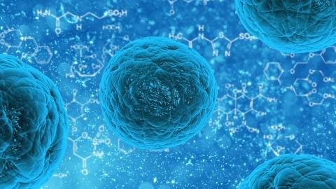 Blue stem cells