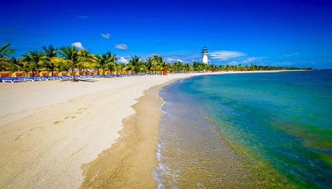 Beach at Harvest Caye in Belize