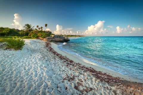 Playa del Carmen - Mustang_79/iStock/Getty Images Plus/Getty Images