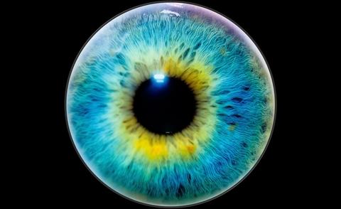 [Image: Eye.jpg?VikhP_z05uDlNfU85tprMf5VT36zVPe7&itok=Rgh1CxuO]