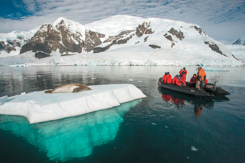 Silversea zodiac observing seal in Paradise bay Antarctica