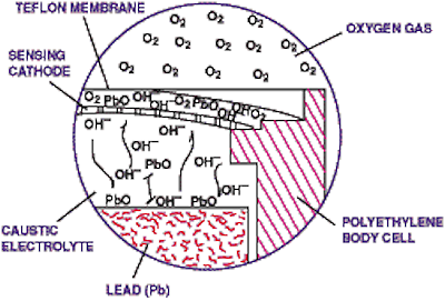 Figure 2. In normal fuel-cell operation, oxygen, after diffusing through a Teflon membrane, is reduced at the cathode. The anode oxidation provides the energy required for oxygen reduction.