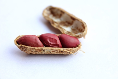 Aimmune knocks down DBV with positive peanut results