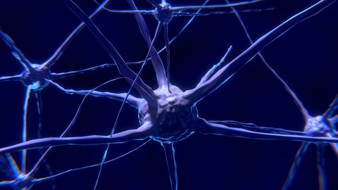 blue illustration of neurons