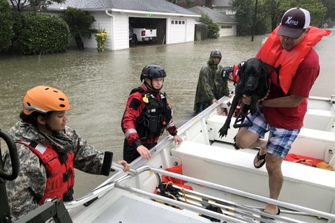 Man, dog enter boat during Hurricane Harvey rescue