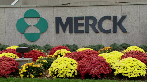 Merck Immunotherapy Drug Shines In Lung Cancer Study