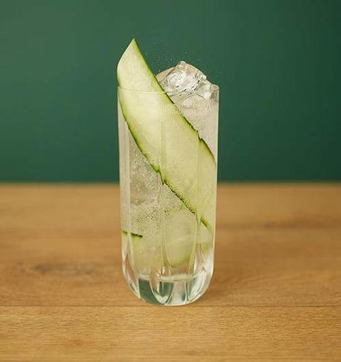 Seedlip Garden & Elderflower Tonic - 12 Mocktail Recipes for Dry January