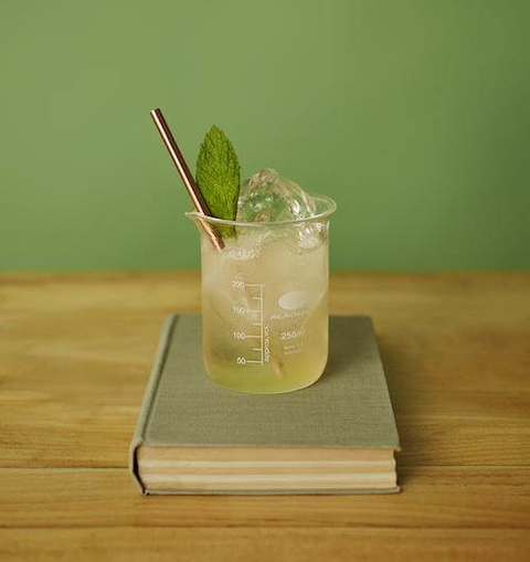 Seedlip Garden Booch - 12 Mocktail Recipes for Dry January