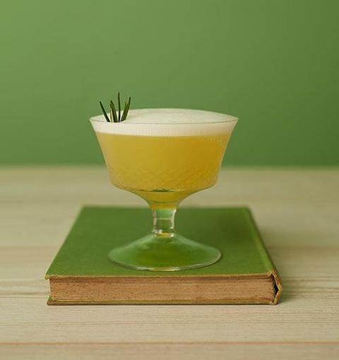 Seedlip Garden Sour - 12 Mocktail Recipes for Dry January