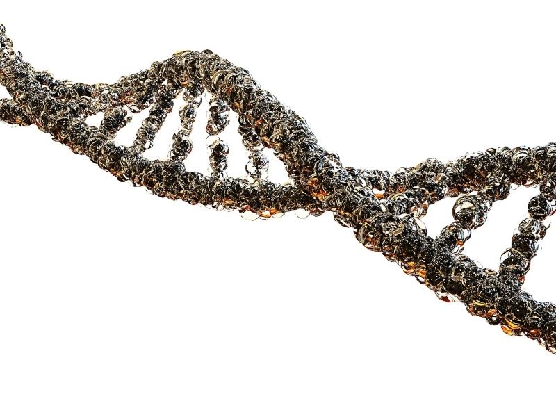 Taysha raises $95M to take 4 CNS gene therapies into the clinic