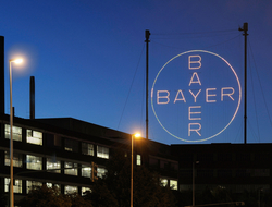 Bayer neon sign