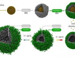 Double-walled nano capsules
