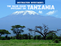 Tanzania Destination Investment