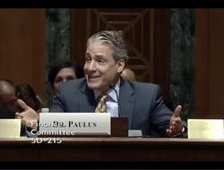 Screenshot of Dr. Paulus testifying