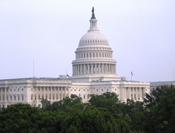 The Capitol Building in Washington, D.C.