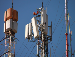 Cellular antennas on tower