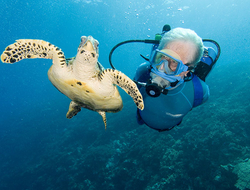 Jean Michel Cousteau Editorial