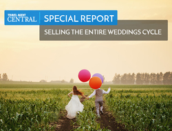 Destination Weddings Special Report Header Image