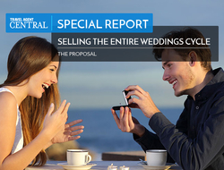 Weddings Special Report Proposal