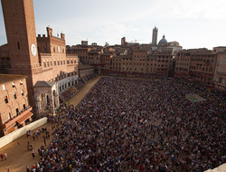 Piazza del Campo during the Siena Palio