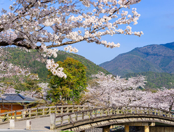 Arashiyama, Kyoto, Japan in the spring