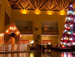 Grand Velas Christmas tree