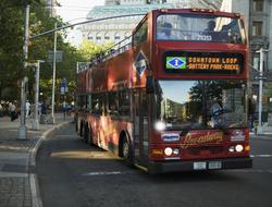 New York Tour Bus
