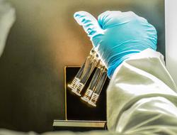 Sinergium Biotech