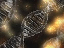 Illustration of three DNA helices