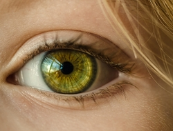 close-up of child's green eye
