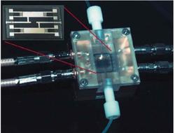 Acoustic wave sensor