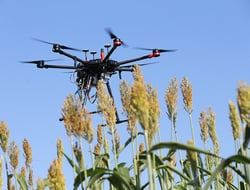 Purdue receives $9 million for remote plant sensing