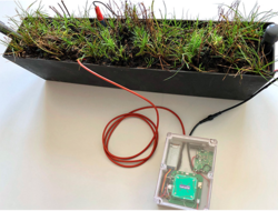 Plant-e, Lacuna create plant-based satellite transmission service