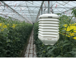 Autogrow develops wireless sensor for greenhouses