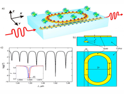 In the proposed biosensor, the waveguide is inside the dielectric substrate. The resonator is positioned at the interface between the dielectric material and the biological fluid that is analyzed.