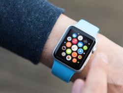 A wrist with an Apple Watch