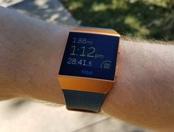The Fitbit Ionic device