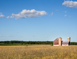 Classic rural farm scene with a weathered red barn, silos, golden crops and a blue sky