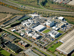Pfizer Little Island plant Ireland
