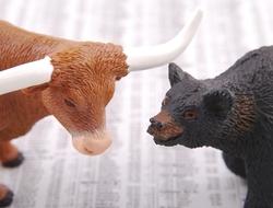 Bull versus bear market