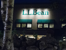L.L. Bean 800x600