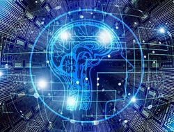Study: neural network market to grow 20.5% through 2024