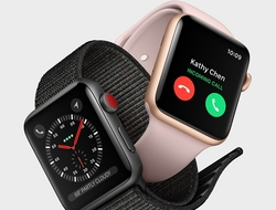 Apple Watch Series 3 with cellular (Apple)