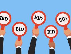 auction bidding