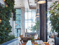 Landscape design firm Harrison Green uses green wall made from wire mesh for 1 Hotel Brooklyn Bridge.