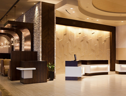DDI's Sherry Decker designs Hilton's newest property, the 20-story Hilton Denver City Center.