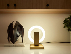 . The light was conceived, created and crafted by Maurice Dery and his team at Karice Enterprises.  The light can be placed on a pedestal to create a sculptural piece of art.