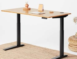 The Jarvis adjustable-height standing desk features a lifting capacity of 350 pounds.